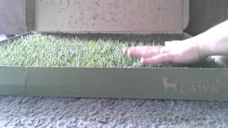 Doggie Lawn Unboxing And Review