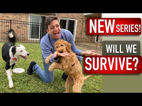 NEW SERIES ANNOUNCEMENT! Coming This Sunday October 25th