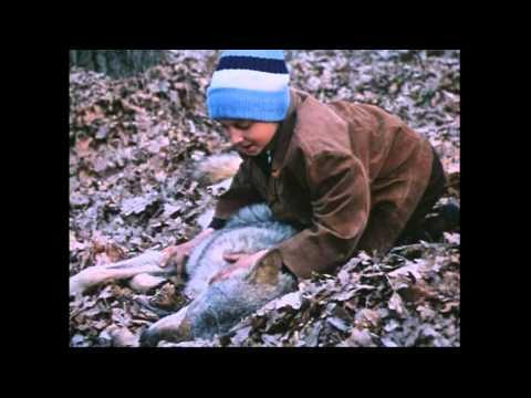Сероманец (1989) - смотреть онлайн фильм бесплатно