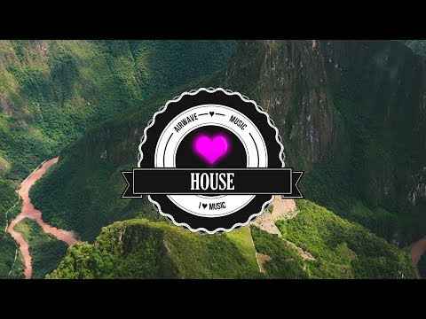 EDX - We Can't Give Up (WildVibes Remix)