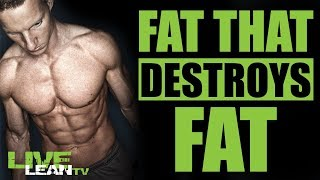FAT CELLS THAT ACTUALLY BURN BODY FAT (HOW TO CREATE THEM)