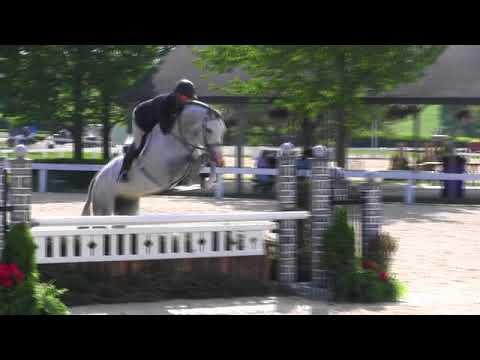 Video of CORDOLENSKY ridden by SCOTT STEWART from Net!