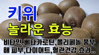 [#키위효과] 키위의 놀라운 효능 10가지 (비타민C,…