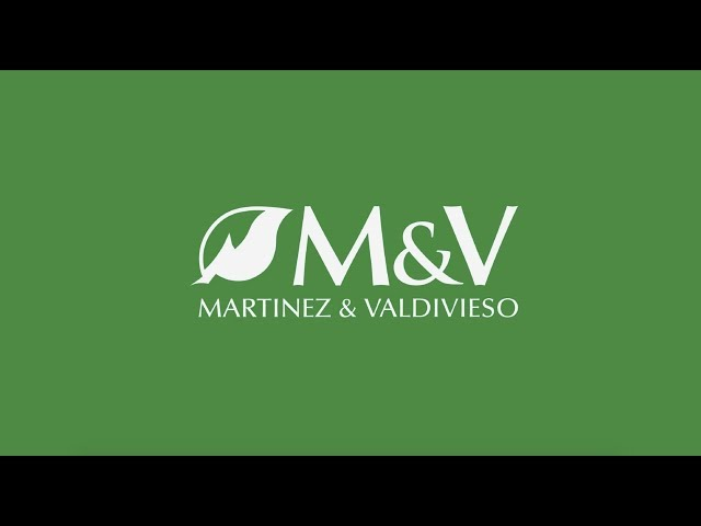 Corporativo Martinez & Valdivieso