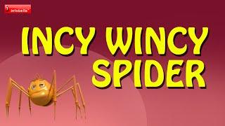 Incy Wincy Spider Nursery Rhyme