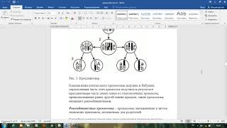 Горбунова Т.П. Тема урока: Наследственная изменчивость.