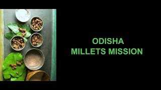 An Overview of Odisha Millets Mission | A Government of Odisha Initiative