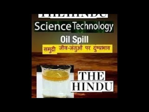 THE HINDU SCIENCE AND TECH. PAGE IN HINDI MARINE ECOLOGY SOLUTION TO MARINE OIL SPILL