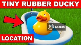 Search the TINY RUBBER DUCKY at the Spot Hidden in the Summertime Splashdown Loading Screen Fortnite