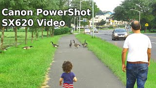Canon PowerShot SX620 HS Camera 25x Optical Zoom 1080p HD Video Test Footage Review