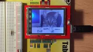 "TFT LCD 2.4"" Shield MicroSD Bitmaps example with Arduino UNO"