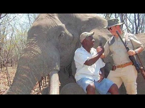 Why Trophy Hunting Is Actually...GOOD!