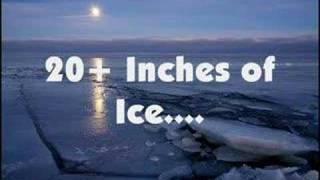 Ice Fish Baby