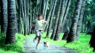 Hutch Dog Ad -You and I.flv