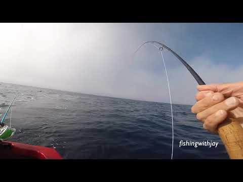 Sept 2 2018-  Oregon Albacore Fly Fishing