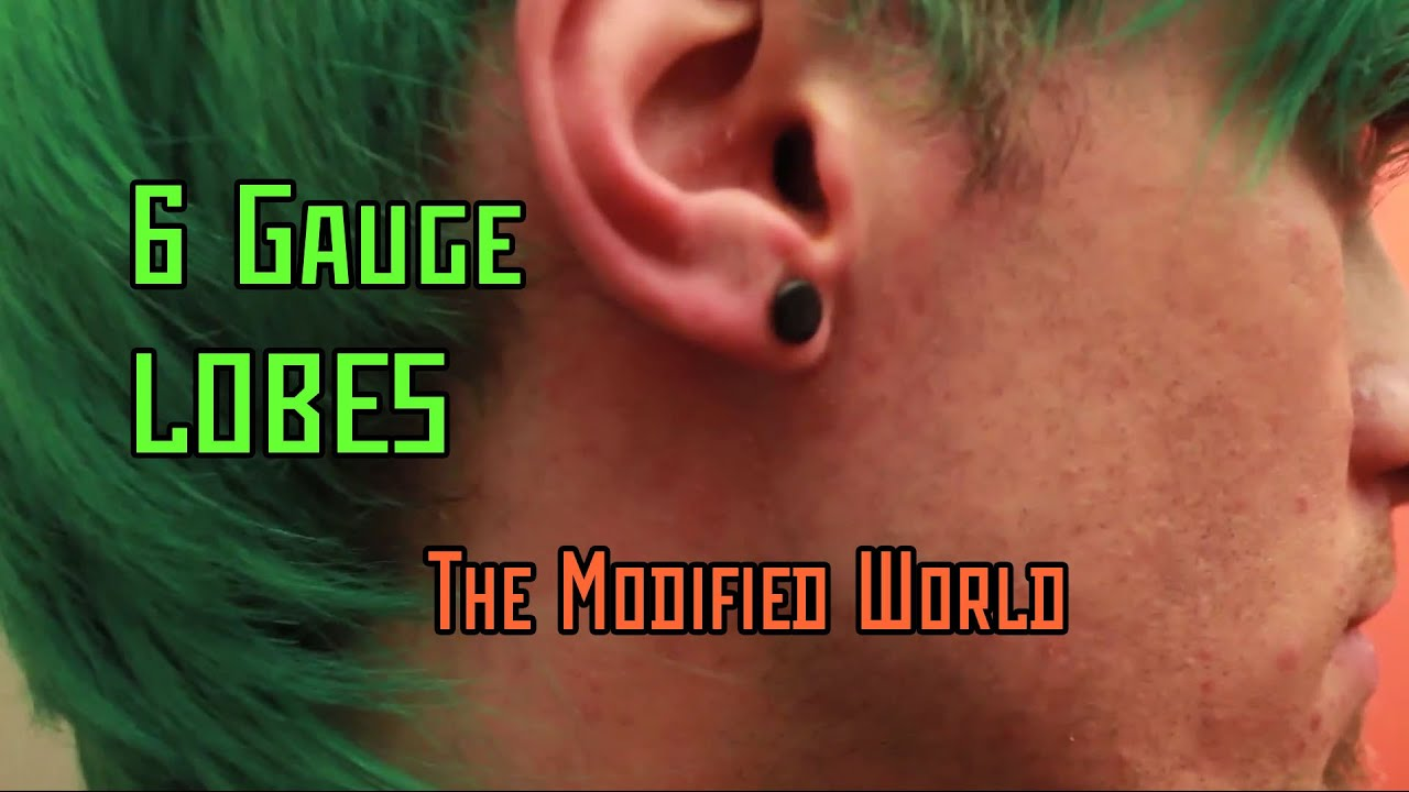 6 Gauge Lobes The Modified World