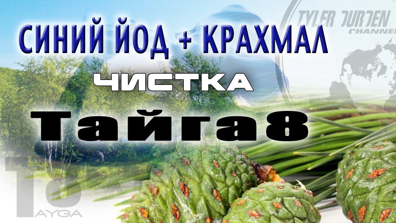 СИНИЙ ЙОД + КРАХМАЛ / ЧИСТКА / ТАЙГА 8 - YouTube