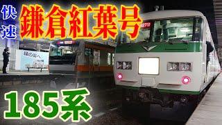 【秋の185系臨時快速】快速鎌倉紅葉号に乗ってきた!