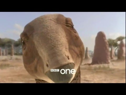 Download BBC Planet Dinosaur Documentary HD