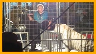 Brian Franzen Uses Fear and Punishment to Force Tigers to Perform at Shrine Circus