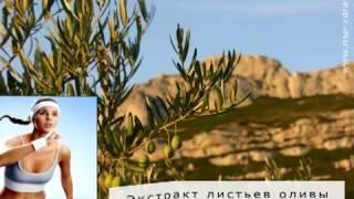 экстракт Листьев Оливы  (Olive Leaf Extract) - компании NSP