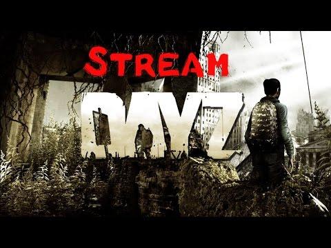 Minecraft Stream mit RobLog [Deutsch] und DayZ danach