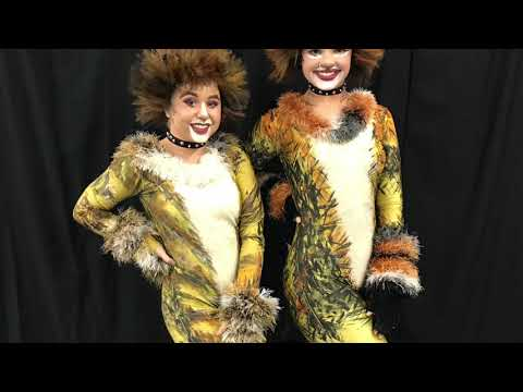 """MDDE presents.."""" Excerpts from the Musical CATS"""" 2018"""