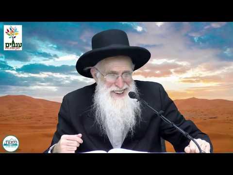 פרשת שלח - הרב יהודה יוספי - שידור חי HD