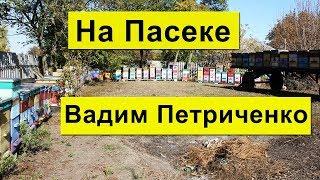 На Пасеке больше 200 семей Карника✅ Вадим Петриченко Хорольский р-н