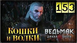 Прохождение Ведьмак 3: Дикая Охота #153 Игры кошек и волков