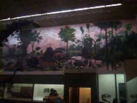 Quick Shot of the Dino Room at the Peabody Museum of Natural History