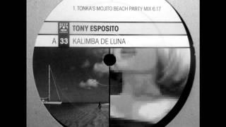 tony esposito -  kalimba de luna dj tonka mix