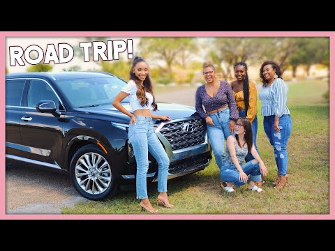 ROAD TRIP with my FOLLOWERS in the 2020 Hyundai Palisade!