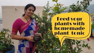 Best organic liquid fertiliser for fruiting/flowering.   కంపోస్టు  చేయడం వల్ల  మరో  ప్రయోజనం#organic