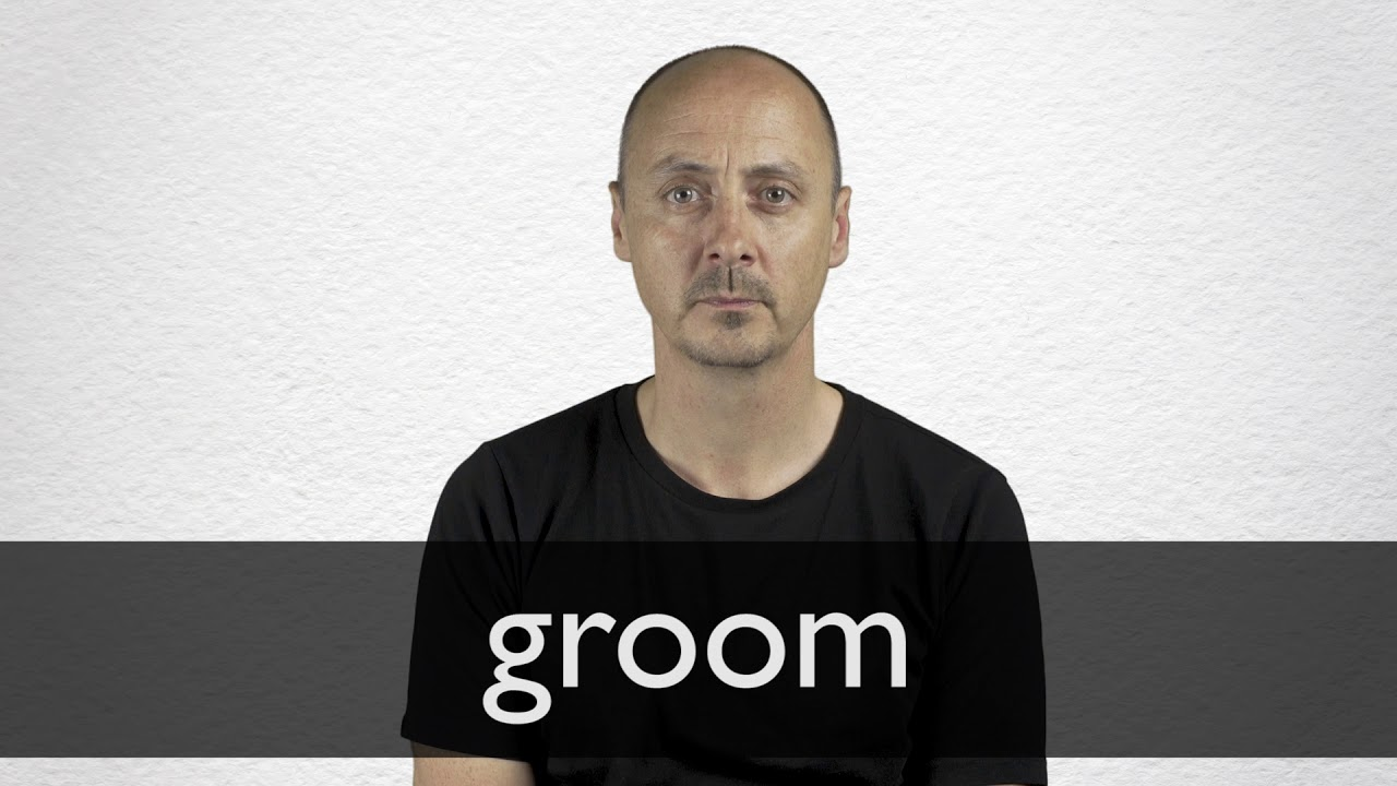 Groom definition and meaning | Collins English Dictionary