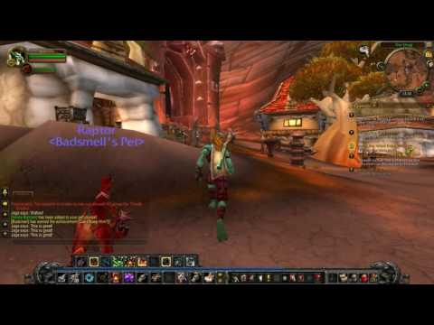 World of Warcraft to Level 20 #17: Balloons and Cactus
