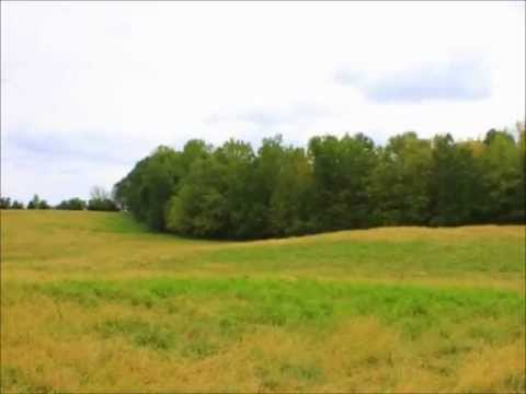 Union County North Carolina Countryside