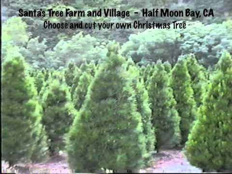 Santa's Tree Farm and Village 1.mov