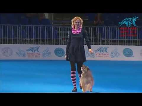 FCI Dog dance World Championship 2016 – Freestyle final  - Ilina Polina and Hardyheart (Russia)
