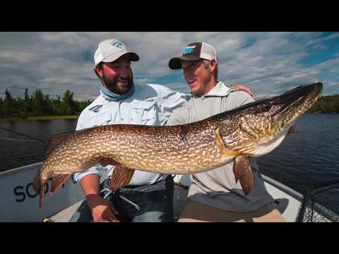 NORTHERN SASKATCHEWAN TROPHY PIKE
