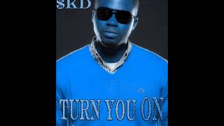 Watch Skd Turn You On video
