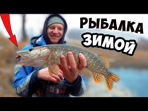 симулятор рыбы убийцы щука