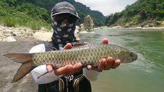 最近溪釣影片 大合集