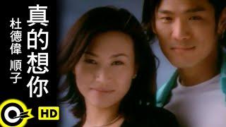 杜德偉 Alex To&順子 Shunza【真的想妳 Missing you】Official Music Video