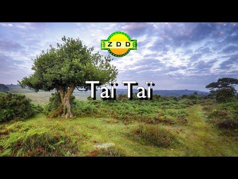 Hora keff israel youtube for Dans keff