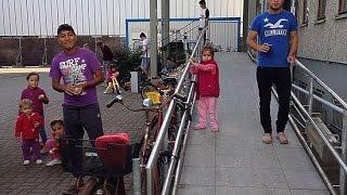 Как живут беженцы в Нидерландах.