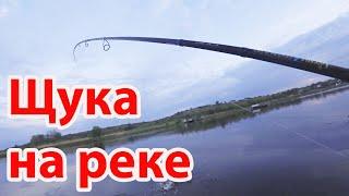 Рыбалка на реке ловля щуки и окуня на джиг спиннинг Crazy Fish Versus VSR862LT