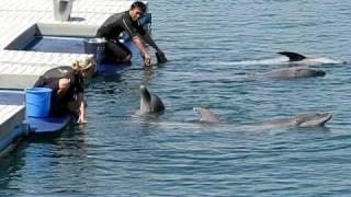 Ocean Adventure - Subic Philippines