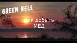 Green Hell ( Как добыть мед)
