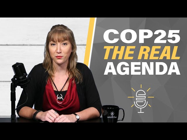 COP25: Climate Summit's Real Agenda